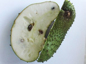 Soursop Graviola Health